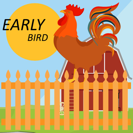 early summer: Vector illustration early bird concept. Rooster, cock on fence in a countryside