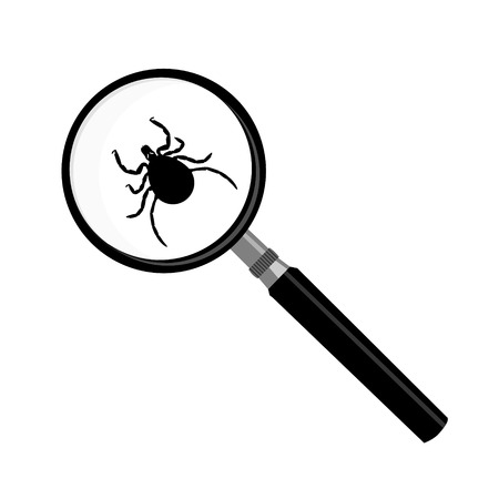 mite: Vector antivirus scanning icon. Vector illustration mite insect under magnifying glass