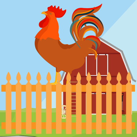 rooster at dawn: Vector illustration early bird concept. Rooster, cock on fence in a countryside