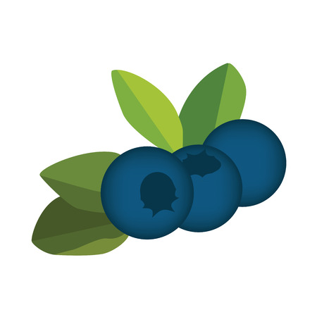 whortleberry: Raster illustration blueberry, leaves and berries. Berry blueberry icon. Ripe and fresh blueberry Stock Photo