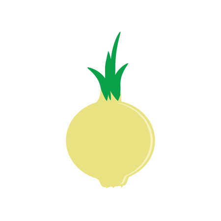 onion rings: Raster illustration white, yellow onion vegetable. Fresh and healthy food. Onion flat icon Stock Photo