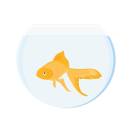 Raster illustration realistic goldfish in bowl. Gold fish swimming in transparent round glass bowl aquarium