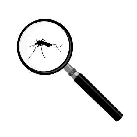 malaria: Raster illustration mosquito, malaria in magnifying glass zoom. Magnifier insect Stock Photo