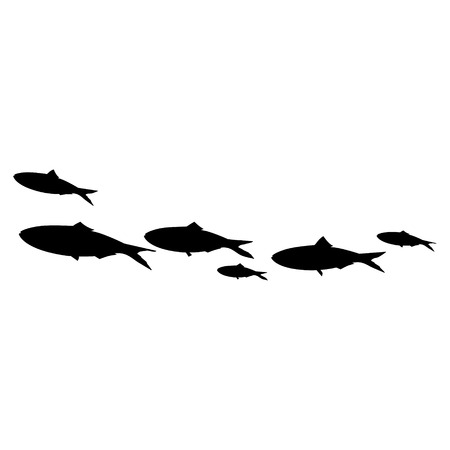 pilchard: Raster illustration school of fish swimming in group. Sardines black silhouette