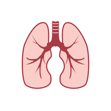 raster illustration: Raster illustration of human lungs. Lungs icon Stock Photo