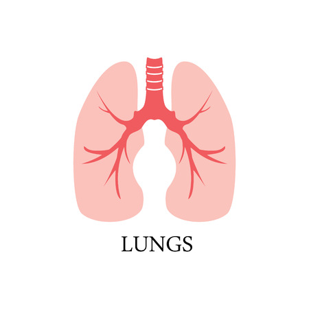 Raster illustration of human lungs. Lungs icon Stock Photo