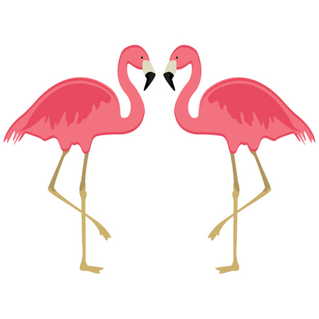 Raster illustration pink flamingo. Exotic bird. Cool flamingo decorative flat design element. Lovely flamingo