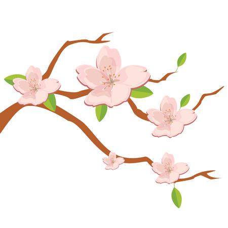 Vector il fondo della natura dell'illustrazione con il ramo del fiore dei fiori rosa di sakura. Fiore di ciliegio giapponese