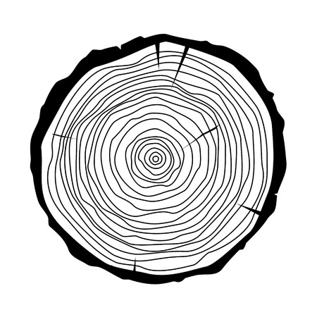 annual ring annual ring: Raster illustration tree rings. Saw cut tree trunk. Annual tree growth rings  icon