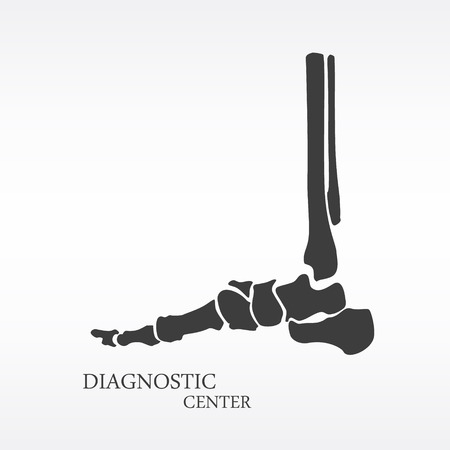 Vector illustration foot bone anatomy side view. Orthopedic flat icon. Diagnostic center