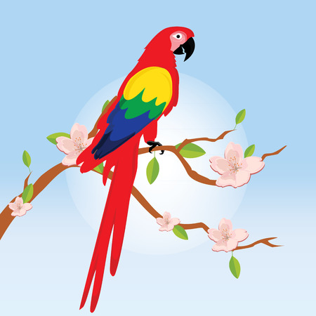 Raster illustration colorful macaw parrot sitting on blooming tree branch. Beautiful macaw. Cartoon red parrot