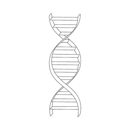 heredity: Vector illustration dna spiral outline drawing. Dna symbols icon. Genetic sign, element