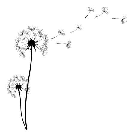 Ilustracja wektora dandelion czasu. Dwa dmuchanie dmuchanie na wietrze. Wiatr napełnia mniszka lekarskiego