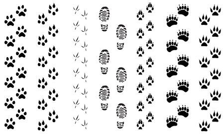 Vector illustration animal and birds footprints tracks icon set. Set foot prints wild animals, illustration of black silhouette.