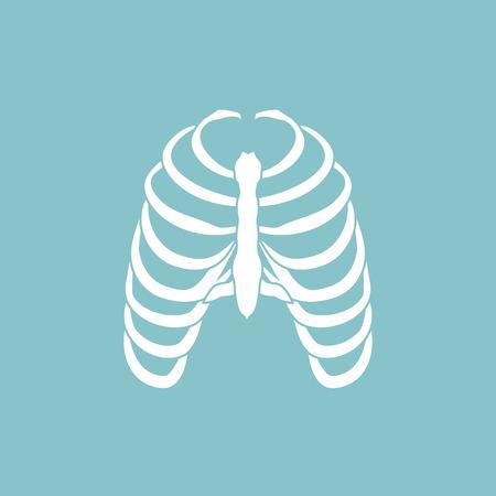 human ribs cage, thoracic bones icon.