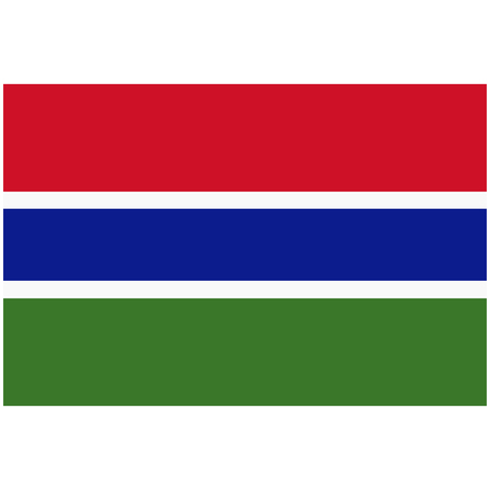 raster illustration flag of Gambia icon. Rectangle national flag of Gambia. Gambia flag button