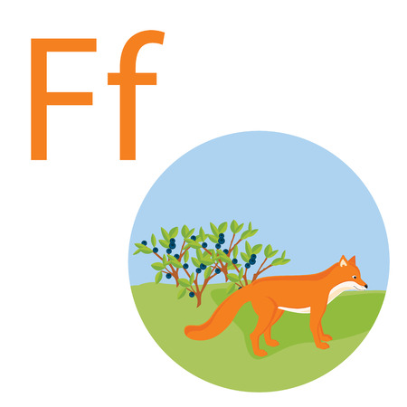 Cute animal alphabet for ABC book. raster illustration of cartoon animals. Fox for F letter Stock fotó