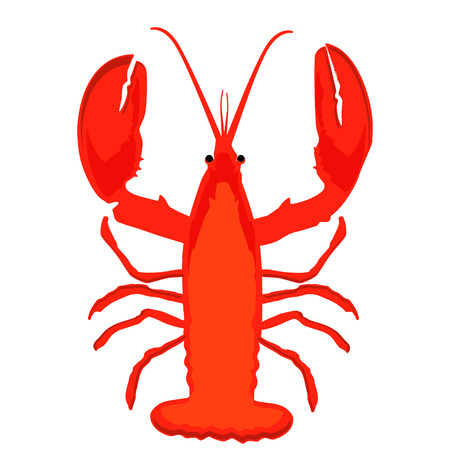 Raster illustration lobster icon. Fresh seafood. Menu Stock Photo