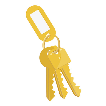 Raster illustration blank golden tag and golden keys. Bunch of keys with keychain isolated on white background