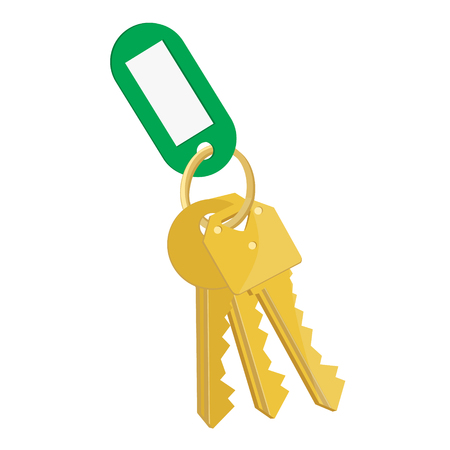 Raster illustration blank green tag and golden keys. Bunch of keys with keychain isolated on white background