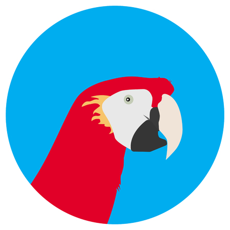 macaw: Raster illustration tropical bird. Macaw red parrot round flat icon. Logo