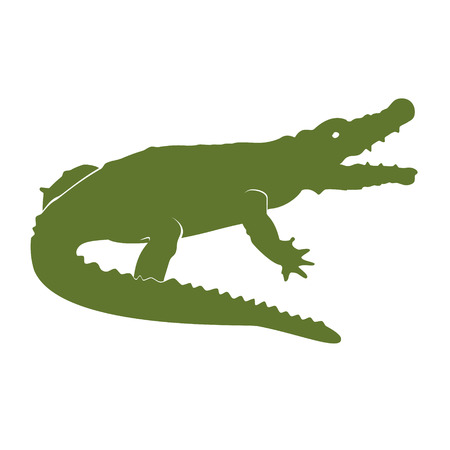 Raster illustration green crocodile sign for design. African animal icon. Zoo. Crocodile logo.