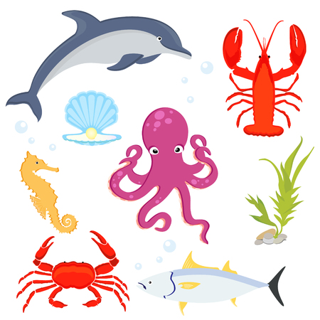 Sea fishes and animals collection. Sea creatures dolphin, lobster, crab, sea horse, tuna, sea shell and octopus.