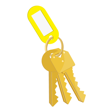 Raster illustration blank yellow tag and golden keys. Bunch of keys with keychain isolated on white background
