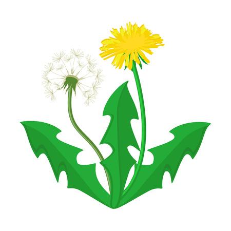 Raster illustration bouquet of dandelions with leaves. Summer flower yellow dandelion. Dandelion raster icon, logo. Stock Photo