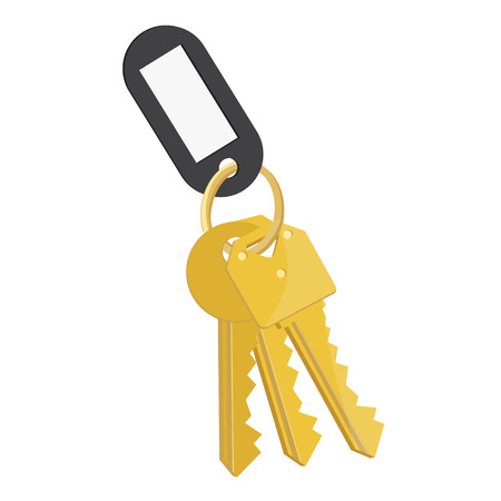 lock symbol: Raster illustration blank black tag and golden keys. Bunch of keys with keychain isolated on white background