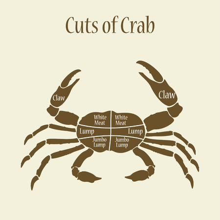 Raster illustration cut of meat set. Poster butcher diagram and scheme - Crab