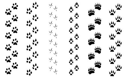 Raster illustration animal and birds footprints tracks icon set. Set foot prints wild animals, illustration of black silhouette.