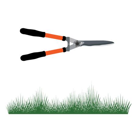 Raster illustration green grass and garden scissors isolated on white background. Spring fresh grass. Grass border