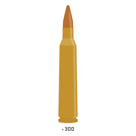 Vector illustration icon bullet 300 caliber isolated on white background. Illustration