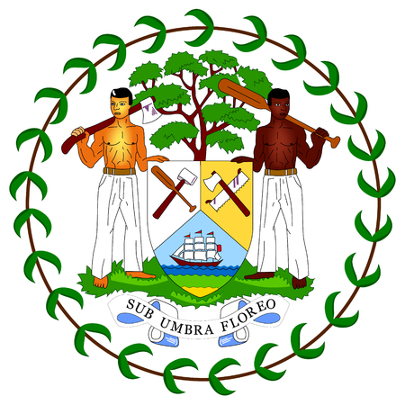 A Vector icon coat of arms flag of Belize. Central American country Belize flag sign, symbol