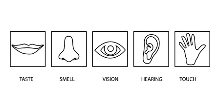 Icon set of five human senses: vision (eye), smell (nose), hearing (ear), touch (hand), taste (mouth ). Simple line icons