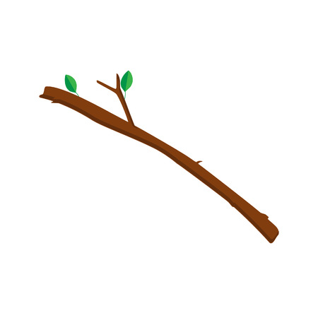 Vector illustration tree branch with green leaves isolated on white background