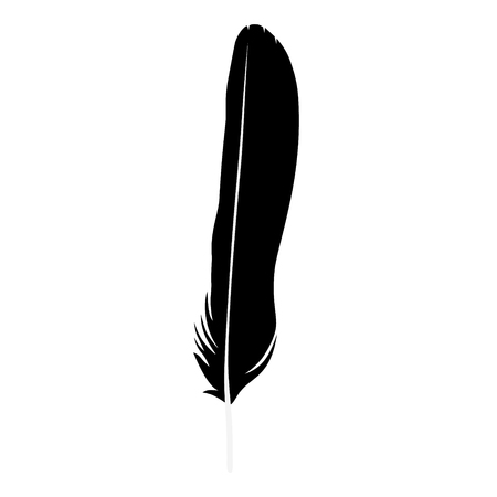 Vector illustration detailed feather silhouette isolated on white