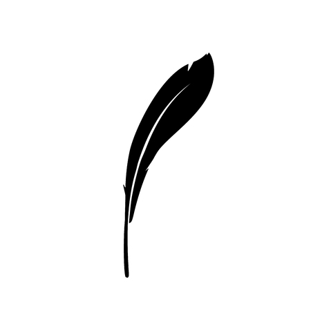Vector icon feather isolated on white background