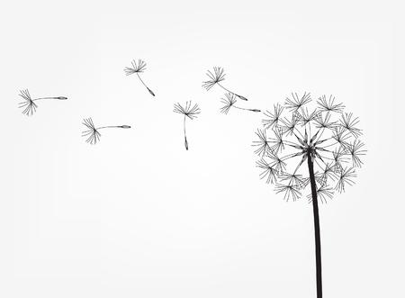 Abstrakter Hintergrund eines Löwenzahns für Design. Der Wind bläst die Samen eines Löwenzahns. Vorlage für Poster, Tapeten, Poster. Vektor-Illustration