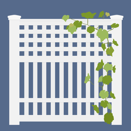 Wooden white rural garden fence  and green ivy plant over it isolated on blue background. Vector illustration