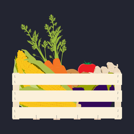 Raster illustration wooden box with vegetables food. Carrots, potatoes, tomatos, eggplants, garlic and golden corn Stock Photo