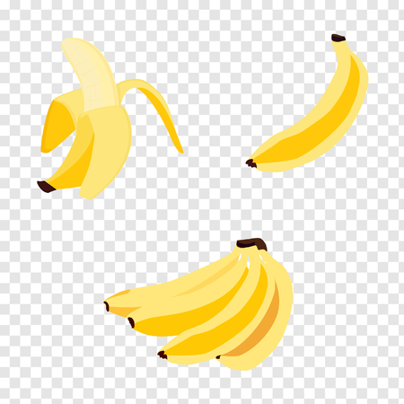 Set of realistic bananas, vector icons. Banana,half peeled banana,bunch of bananas isolated on transparent background, banana icon Ilustração