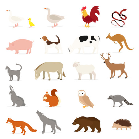 Cute animals collection: farm animals, wild animals isolated on white background. Vector illustration design template