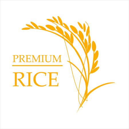 Orange paddy rice premium organic natural product banner vector design