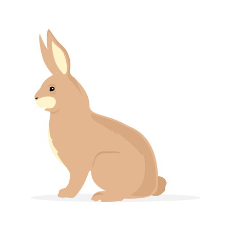 Cute brown rabbit bunny rodent cartoon isolated on white background.