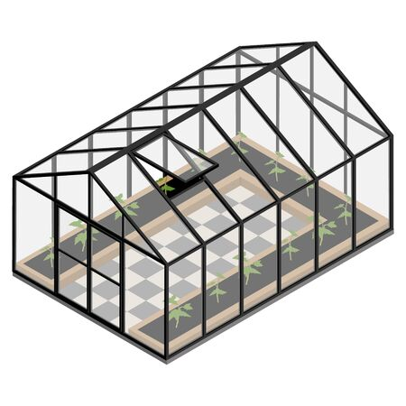Greenhouse at an organic farm. Growing different plants inside isometric view. Glass house.