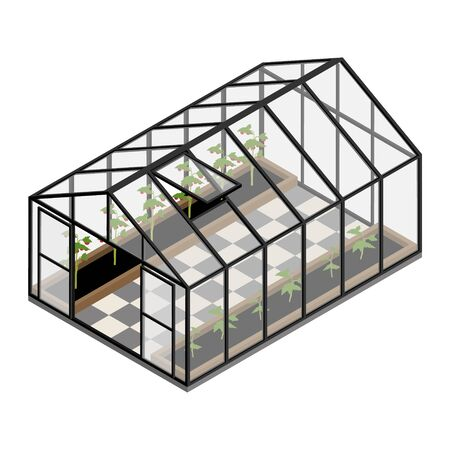 Greenhouse at an organic farm. Growing tomatoes isometric view. Glass house.