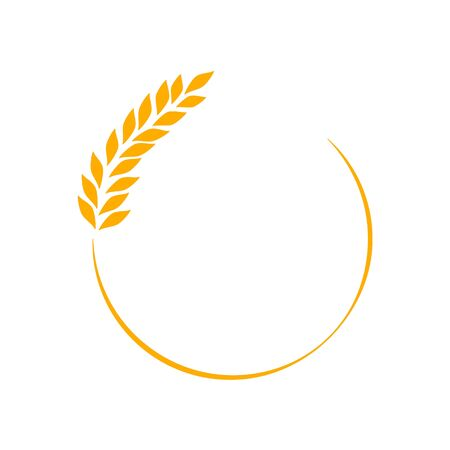 Agriculture wheat  Template vector icon
