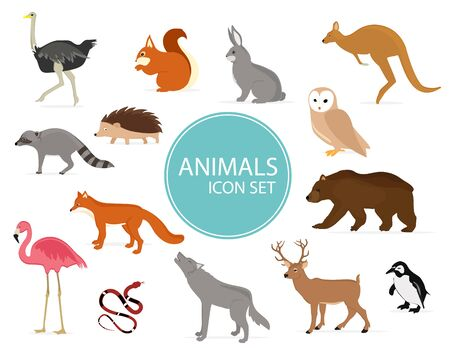 Woodland forest animals birds collection including deer, bear, owl, squirrel, hedgehog, rabbit, fox and wolf. Stock Illustratie